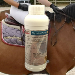 EQUI-Artiprotect Elite protection et renfort articulaire.