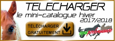 télécharger catalogue equiperformance